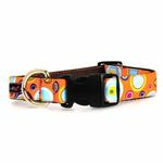 View Image 2 of WaLk-e-Woo Martini Dog Collar - Orange