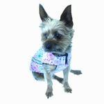 View Image 4 of West Coast Dog Rainwear Dandelion Print