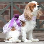 View Image 3 of Wisteria Floral Dog Dress by Doggie Design