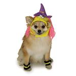 View Image 1 of Witch Dog Halloween Costume Hat