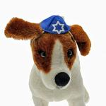 View Image 1 of Yarmulke Dog Hat