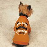 View Image 1 of Zack & Zoey Big Dogs Mustache Club Dog T-Shirt - Orange