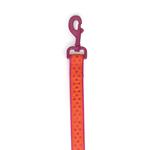 Zack & Zoey Brite Polka Dot Dog Leash - Raspberry