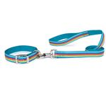 View Image 1 of Zack & Zoey Brite Stripe Dog Leash - Bluebird