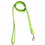 Zack & Zoey Flutter Bugs Charm Dog Leash - Lady Bug