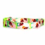 View Image 1 of Zack & Zoey Flutter Bugs Dog Collar - Lady Bug