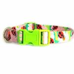 View Image 2 of Zack & Zoey Flutter Bugs Dog Collar - Lady Bug