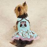 View Image 2 of Zack & Zoey Hoot and Howl Dog Dress