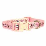 View Image 2 of Zack & Zoey Ice Cream Sundae Dog Collar - Pink