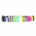 Zack & Zoey Inspirational Dog Collar