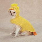 View Image 1 of Just Ducky Halloween Dog Costume