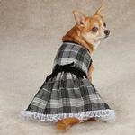 View Image 2 of Zack & Zoey Park Avenue Dog Dress