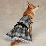 View Image 3 of Zack & Zoey Park Avenue Dog Dress