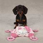 View Image 1 of Zanies Puppy Snuggler Toy - Pink