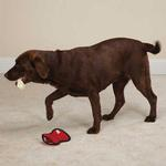 Zanies Rawhiders Dog Toy - Red