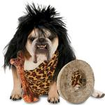View Image 1 of Zelda Cave Dog Halloween Dog Costume