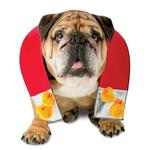 View Image 1 of Zelda Chick Magnet Halloween Dog Costume