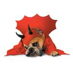 View Image 1 of Zelda Devil Halloween Dog Costume