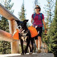 Approach Dog Pack by RuffWear - Campfire Orange