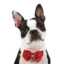 Aria Canine Royale Bowtie - Red Sequin