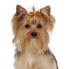 Aria Halloween Polka Dot Dog Bow