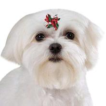 Aria Santa's Satin Dog Grooming Bows