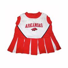 Arkansas Cheerleader Dog Dress