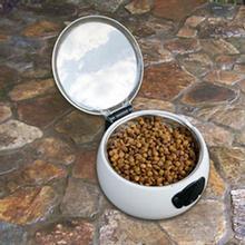 Auto Pet Dish