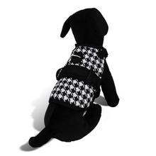 Avant Garde Dog Harness - Sherlock