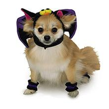 Bat Hat Dog Halloween Costume Hat