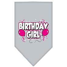 Birthday Girl Screen Print Dog Bandana - Gray