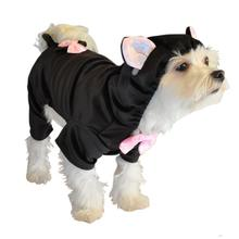 Black Cat Halloween Dog Costume