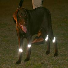 Bright Steps Reflective Dog Leg Bands