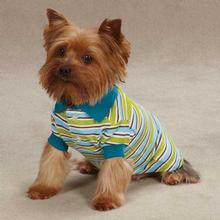 Brite Stripe Dog Polo - Bluebird