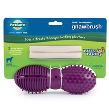 Busy Buddy Gnawbrush Dog Toy