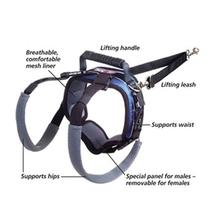 CareLift Pet Lifting Harness - Rear Only