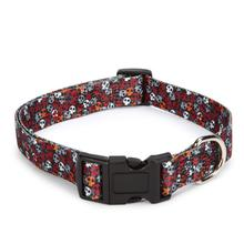 Bone Heads Dog Collar - Orange