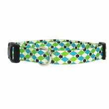 Casual Canine Pooch Pattern Dog Collar - Blue Argyle