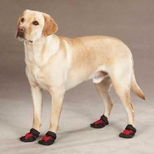 Casual Canine X-Treme Weather Dog Boots