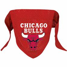 Chicago Bulls Mesh Dog Bandana