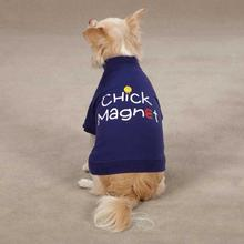 Chick Magnet Dog T-Shirt by Casual Canine - Blue