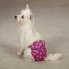 Clean Go Pet Female Pup Pants - Pink Hibiscus