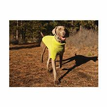 Climate Changer Fleece Dog Jacket by RuffWear - Lichen Green