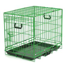 Crate Appeal Collapsible Wire Dog Crate - Lime Twist