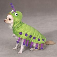 Cutiepillar Dog Costume by Zack & Zoey
