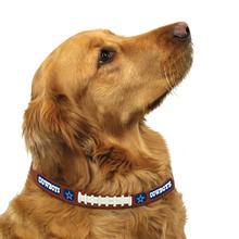 Dallas Cowboys Leather Dog Collar
