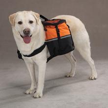 Day Trippers Dog Backpack - Orange