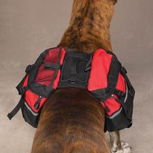 Day Trippers Dog Backpack - Red