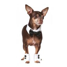 Debonair Dog Bow-tie and Cuff Set