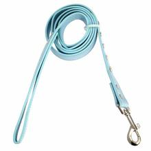 Canine Charmers Dog Leash - Prince